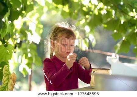 little girl in purple dress eating grapes ** Note: Soft Focus at 100%, best at smaller sizes