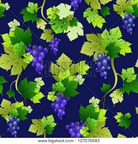 Grapes pattern on dark background. The natural design for banner, ticket, leaflet and so on.