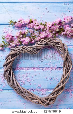 Big decorative heart and pink sakura flowers on blue wooden background. Selective focus.