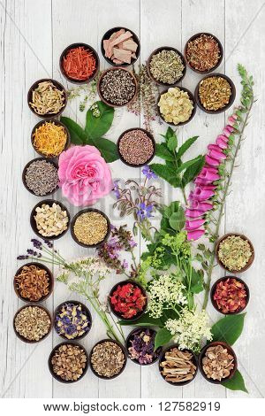 Medicinal flower and herb selection used in alternative herbal medicine over white distressed wooden  background.