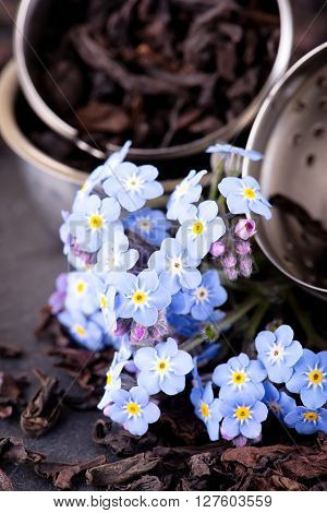 Blue Flower In Front Of Tea Strainer On Black Stone