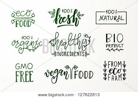 Hand sketched badges and labels with vegetarian vegan raw eco bio natural fresh gluten and GMO free food diet design. Organic food elements set for product cafe restaurant catering and organic product packaging poster