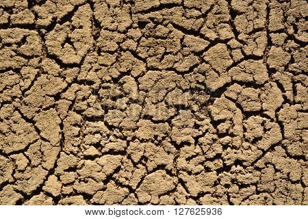 Scorched Earth. Dead Sand Area. Ecological Catastrophe.