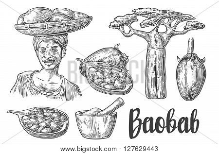 Baobab fruit tree and seeds. Mortar and pestle. African woman carries a basket on her head. Vector vintage engraved illustration isolated on white background
