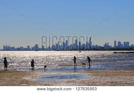 MELBOURNE AUSTRALIA - APRIL 25, 2016: Unidentified people walk dogs in Brighton beach Melbourne.