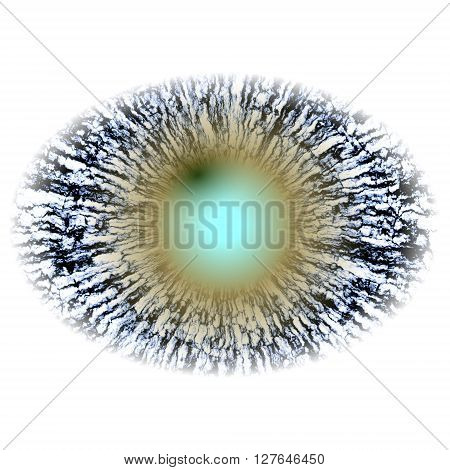 Isolated Elliptic Strange Eye With Large Pupil And Bright Retina In Background. Slim Iris Around Pup