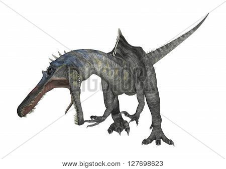 3D Rendering Dinosaur Suchomimus On White