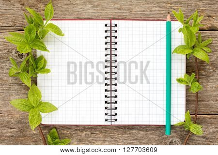 Tree branches and blank notebook with pencil. Copy-space.