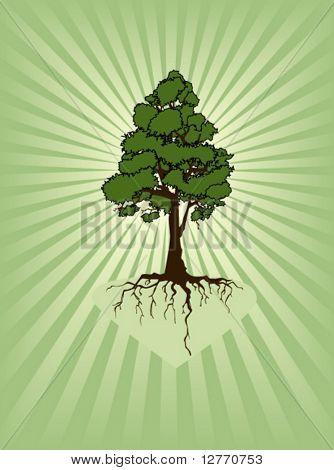 One Tree - Vector
