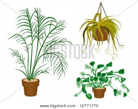 Decorating Plant Icons - Vector