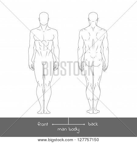 Healthy young man from front and back view. Male muscular body shapes outline vector illustration with the inscription: front and back. Vector illustration of a human figure in linear style