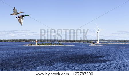 A lighthouse, beacon and windmills on the shore. Islands, buildings and mainland in the background. Wild duck in migration.