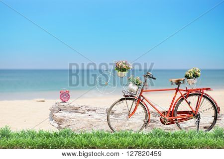 Old red bicycle with basket and flowers with green grass and alarm clock wooden fence at beautiful beach background