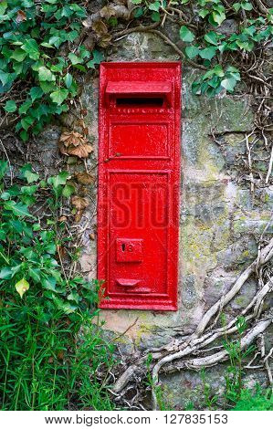 traditional old English red postbox mounted in stone wall surrounded by ivy