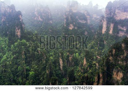 Tall Mountain Peaks Of Yuanjiajie