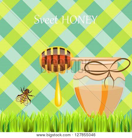Honey On Plaid