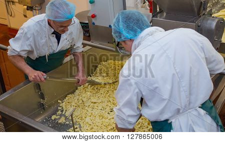Two men shovelling cheese strands in a cheese making factory