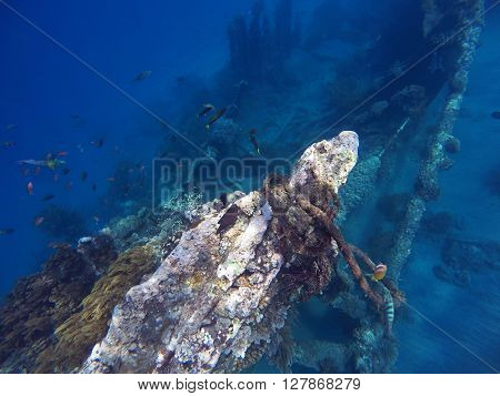 Shipwrecks in Bali sea, Amed snorkeling, snorkeling in Bali, vacation in Bali, impressive sightseens in Bali, sport activity Bali island, tropica sea snorkeling, holiday diving in the sea, Indonesia