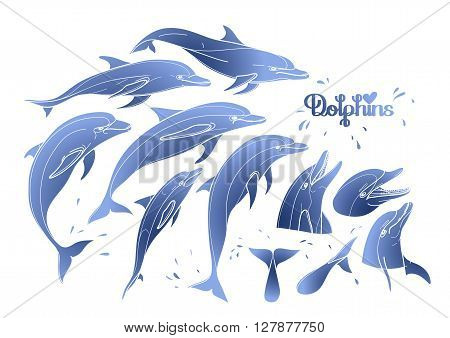 Graphic dolphins collection isolated on white background. Sea and ocean vector creatures in blue colors