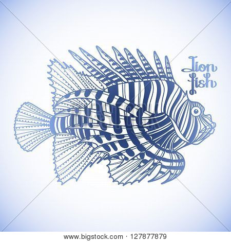 Graphic vector lion fish isolated on white background. Sea and ocean creature in blue colors. Coloring book page design