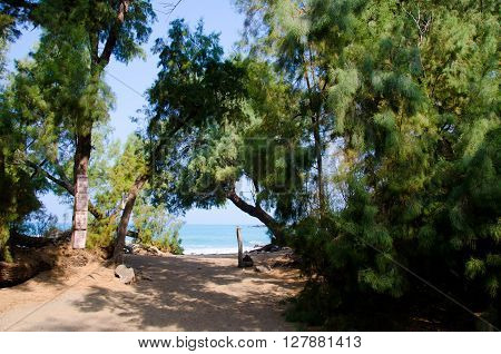 Trail At Entry Of Puako Beach