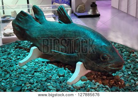 PERM RUSSIA - APR 4 2015: Prehistoric fish in Museum of Local History