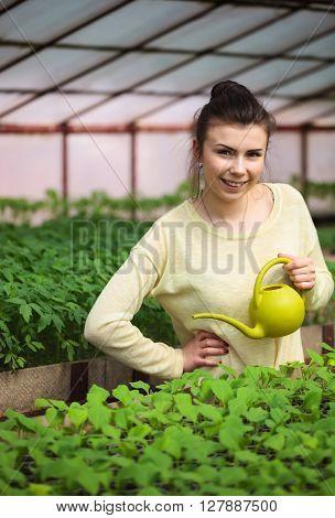 Young Farmer Girl Watering Green Seedlings In Greenhouse