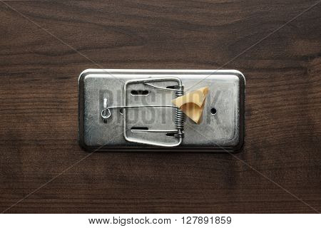 piece of cheese in metal mousetrap concept
