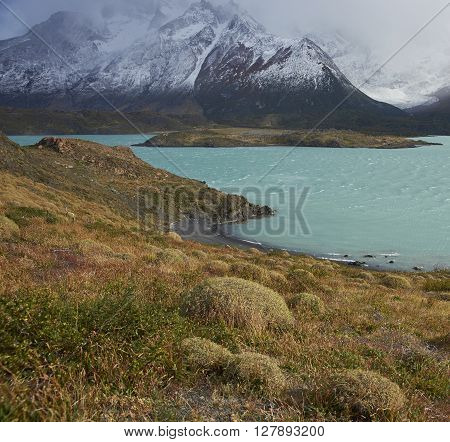 Windswept blue waters of Lago Nordenskjold in the wilderness of Torres del Paine National Park in the Magallanes region of Chile