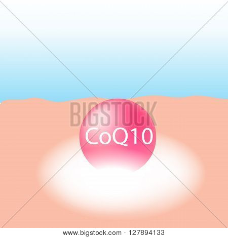Co enzyme-Q10 in cream treatment absorb on the human skin with white glow light absorption infographic vector