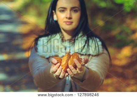 Brunette Woman Holding Golden Leaves In Her Hands