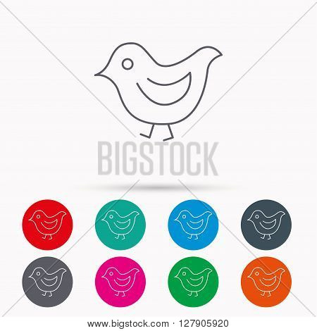 Bird icon. Chick with beak sign. Fowl with wings symbol. Linear icons in circles on white background.
