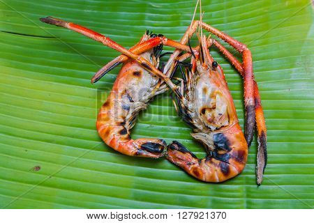 two Grilled giant freshwater prawn on green banana leaf background