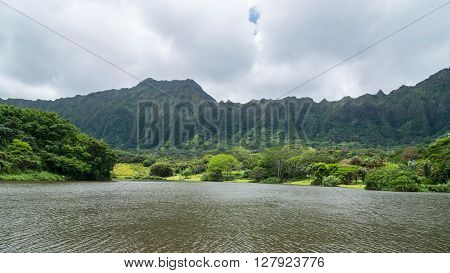 The Hawaiian rain forest of Hoomaluhia botanical gardens in Kaneohe Hawaii on the tropical island paradise of Oahu, Hawaii, USA provides a nature hiking trail for pleasure and enjoyment.