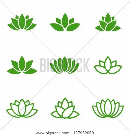 Vector green lotus icons set on white background. Lotus plant. Lotus flower
