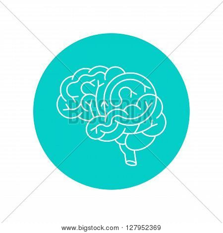 Vector brain icon. Lineal icon of human brain side view. Brain outline icon for medical design or education.