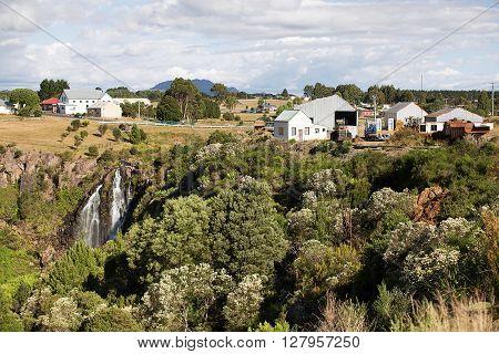 Waratah Falls In Waratah