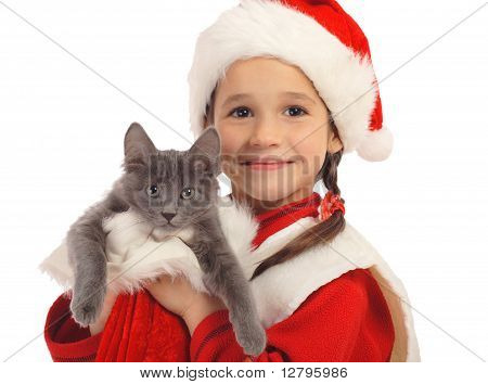 Little girl in Christmas hat with gray kitty isolated on white poster