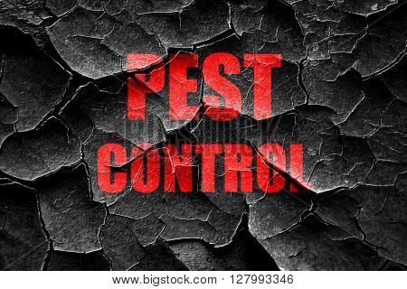 Grunge cracked Pest control background