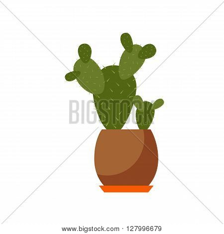 Indoor plant isolated. Vector flat Indoor plant pot illustration. Concept of flat home plant pot. Colorful Indoor plant in pot for your design. Home plant icon