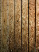 brown wood board. wood texture with natural patterns poster
