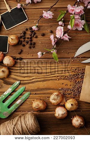 Gardening tools on wooden background. frame, copy space for text