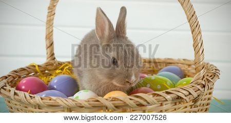 Colorful Easter eggs and Easter bunny sitting in wicker basket