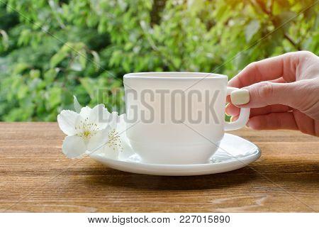Female Hand With White Mug Of Tea And Jasmine. Greenery On Background.
