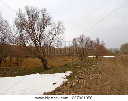 Snow Begins To Melt In The Continental Climate, Spring Is Slowly Coming, Nature Is Alive