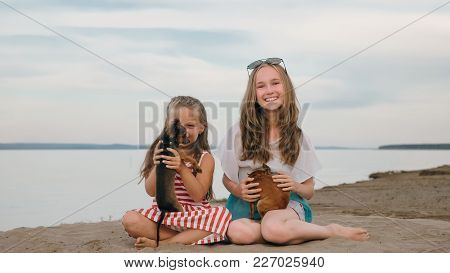 Two Children Playing Which Dogs On The Sand On The Beach. Kid Play With Dogs. They Squeeze Them, Thr