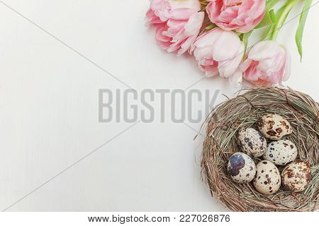 Spring Greeting Card. Easter Eggs In The Nest With Pink Tulips On White Wooden Background. Easter Co