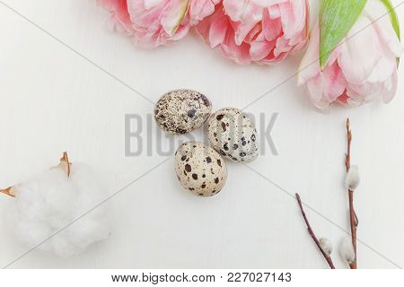 Spring Greeting Card. Easter Eggs With Pink Tulips, Cotton And Willow Branch On White Wooden Backgro