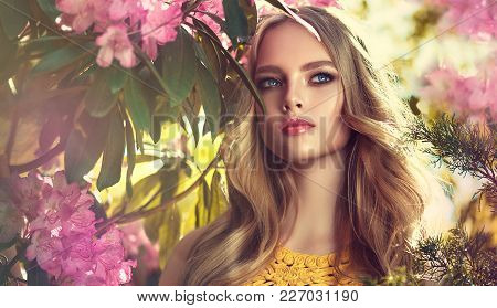 Beautiful Young Model Spring Girl   In Flowers With Hairstyle In Summer Blossom Park. Woman In A Blo