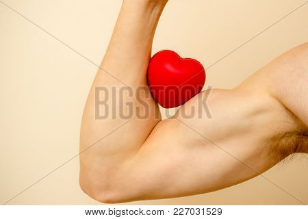 Holding A Red Heard Against A Bicep